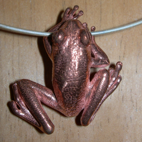 Large frog pendant in bronze