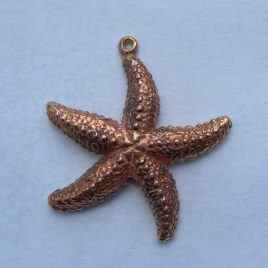 Starfish pendant in bronze