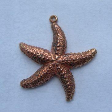 bronze starfish